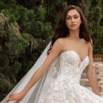 Pronovias Elcira wedding dress