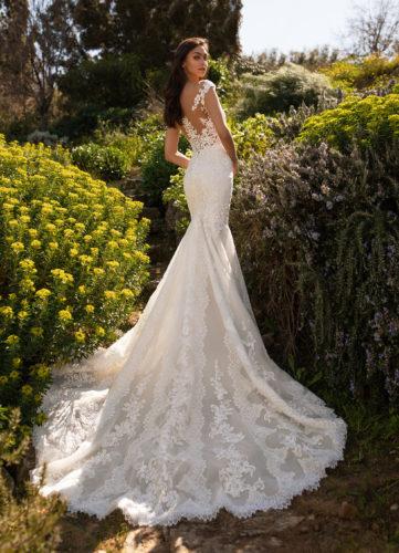 Pronovias Despina, wedding dress, lace wedding dress, fitted wedding dress, pronovias wedding dress